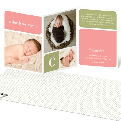 Girl Elegant Birth Announcements -- Baby Book Blocks