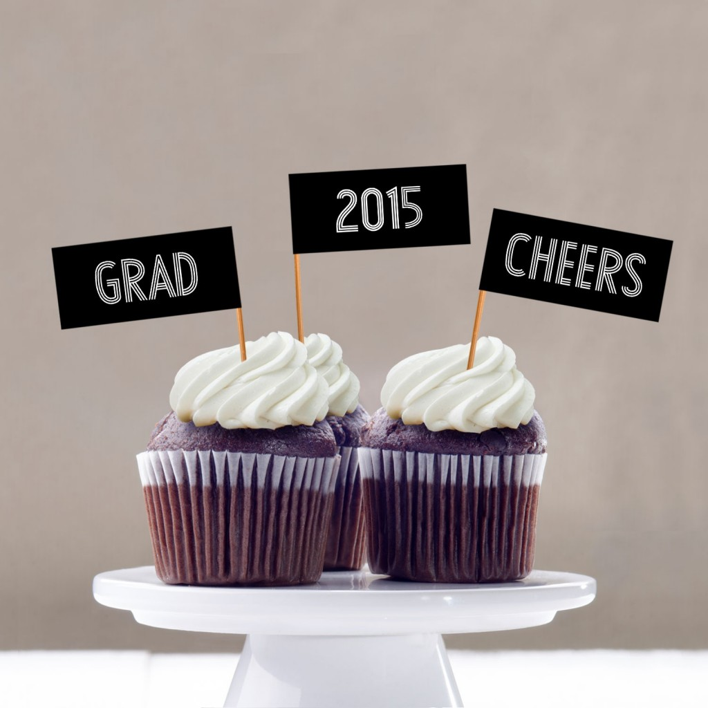 Striped Success Cupcake Flags Graduation Party Decorations