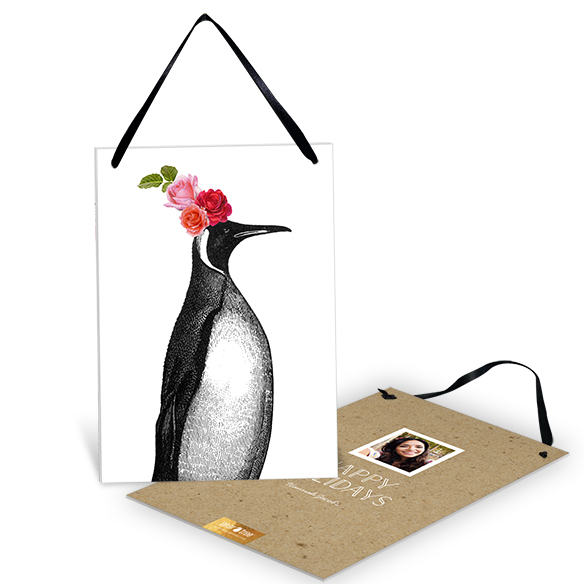 Party Penguin Premium Christmas Cards