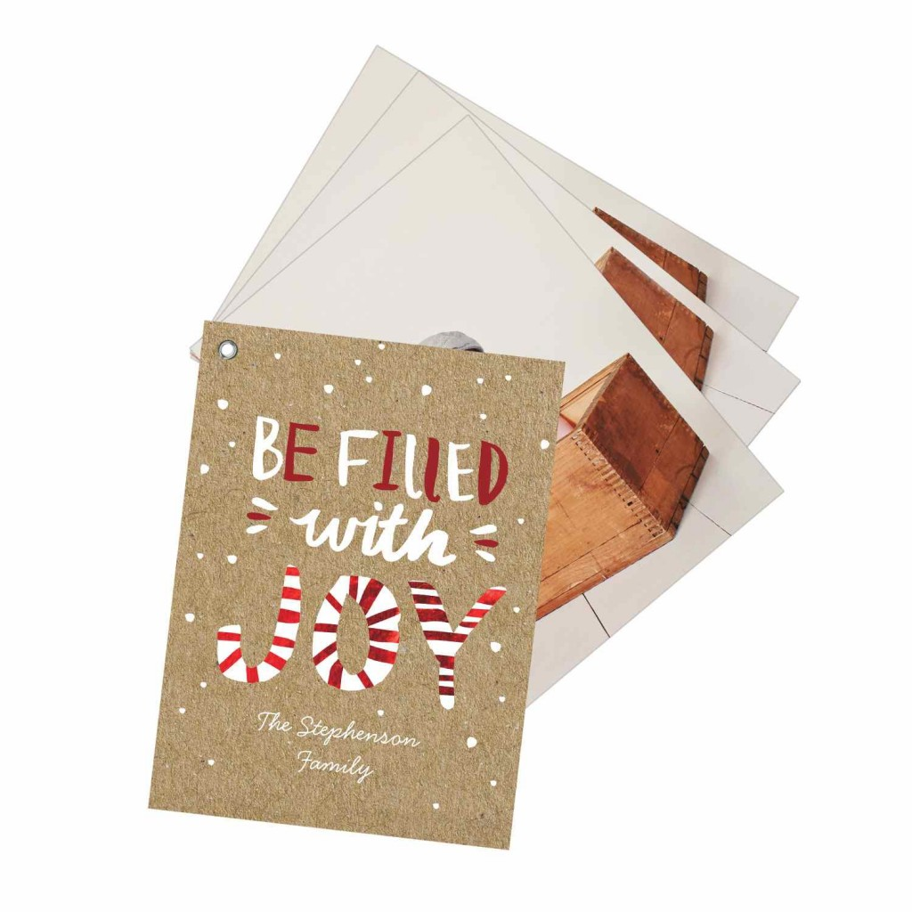 Peppermint Delight Swatchbook Premium Christmas Cards