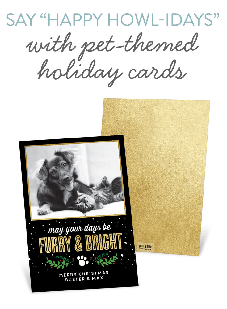 Say Happy Howl Idays With Pet Themed Holiday Cards Pear Tree Blog