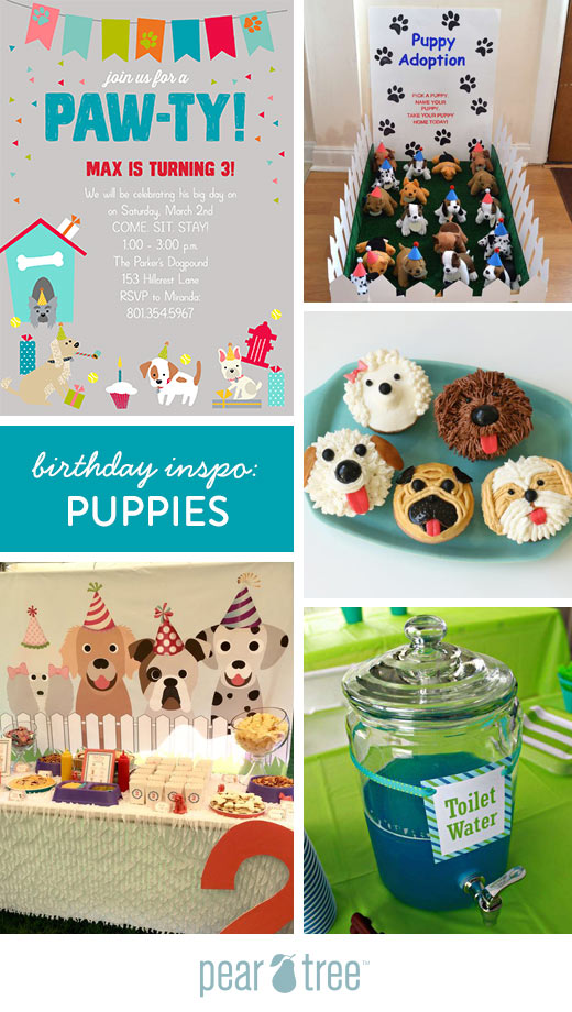 Birthday Inspo Puppies Pear Tree Blog